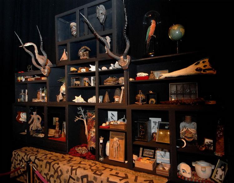 Cabinet de curiosit s for Meuble cabinet de curiosite